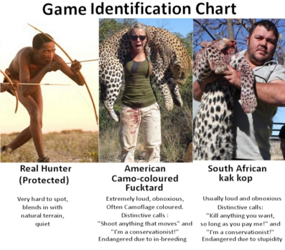 Game identification chart