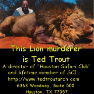 Ted Trout http://www.tedtroutarch.com 6363 Woodway, Suite 500 Houston, TX 77057 PH. 713-266-7887 FAX. 713-266-7948
