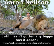https://www.facebook.com/aaronneilson.globalhunter