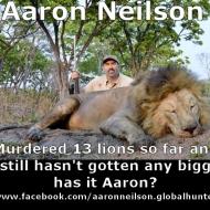 https://www.facebook.com/aaronneilson.globalhunter