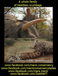 The family that provided Melissa Bachman with the lion she shot https://www.facebook.com/maroi.conservancy https://www.facebook.com/maroiconservancyladies https://www.facebook.com/mara.maroi https://www.facebook.com/IzakNel7l https://www.facebook.com/hannes.nel.969
