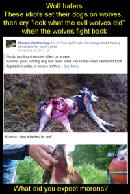 How dare those nasty wolves not just lie down and let the hounds tear them to pieces?