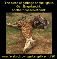 Must be a real tough guy to kill a giraffe https://www.facebook.com/gert.engelbrecht.796