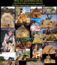 Lion Killers