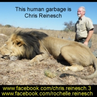 https://www.facebook.com/chris.reinesch.3 https://www.facebook.com/rochelle.reinesch