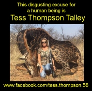 https://www.facebook.com/tess.thompson.58