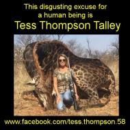 https://www.facebook.com/tess.thompson.58
